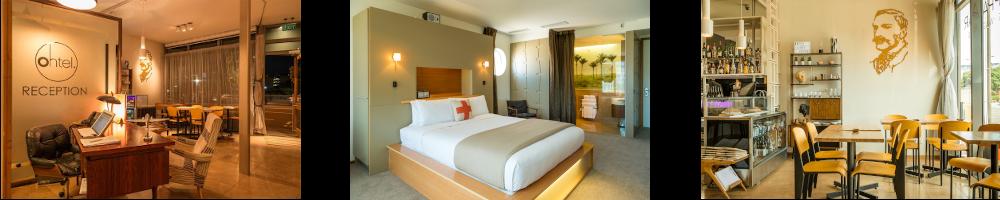 Tierwelt-Neuseeland-Hotel-Wellington